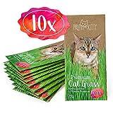 10x Premium Katzengras Samen von PrettyKitty, 10 Beutel Set mit Saatmischung für 100 Töpfe