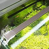 Aquarium Beleuchtung Leuchte Aquarien Eco LED Lampe Lighting 22 - 51 cm, 6 - 17 Watt, weißlicht ca. 7000K Aquarienbeleuchtung (L31CM-9W)