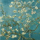 DIY steuern Dekor digitalen Leinwand Ölgemälde von Nummer Kits weltweit bekannten Ölbild Apricot Blossom von Van Gogh 16 * 20 Zoll.