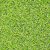 1 kg Perlkies, farbige Dekosteine, Körnung 1,2 - 1,8 mm (grün)
