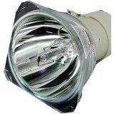 TOP-UHP 5J.J5405.001 Original Projektor Lampe für BENQ EP5920 W1060 W700 W703D Beamer - ohne Lampenhalterung