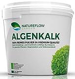 Natureflow Algenkalk Pulver für Buchsbaum - Widerstandskraft und Regeneration für anfällige Buchsbäume (z.B. Buchsbaumzünsler) - Premium-Qualität aus Island - Natürliche Alternative Garden (2,5 kg)