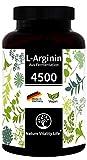 Nature Vitality Life L-Arginin hochdosiert ohne Zusatzstoffe - MADE IN GERMANY - 365 vegane Kapseln - 4500mg L-Arginin HCL pflanzlich (=3750mg reines L-Arginin) je Tagesdosis