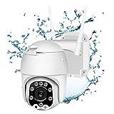 HANNILIFE Überwachungskamera Aussen WLAN Kamera Outdoor Ptz IP Dome Kamera 1080P Zwei Wege Audio IR-Nachtsich, IP66 wasserfest, Bewegungserkennung, Fernzugriff, Pan & Tilt