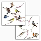 Komar - Window-Sticker BIRDS - 31 x 31 cm - Fensterdeko, Fenstersticker, Fensterfolie, Vogel, Blaumeise, Vintage - 16003, Bunt
