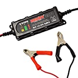 Hecht Batterie-Ladegerät 2012 Erhaltungsladegerät für Batterien (6V-12, 4 Ah bis 120 AhV, LED-Anzeige)