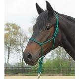 Busse Knotenhalfter Standard, Pony/Vollblut, Tanne