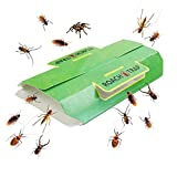 Klhamky 12 Stück Schabenfalle/Insektenfalle Inkl. Lockstoff Kakerlakenfalle Schabenfalle giftfrei Klebefalle