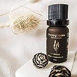 100% Reines Lavendelöl Bio für Aroma Diffuser – 10ml Kostbares Ätherisches Lavendel Öl aus Frankreich – Duftöl aus Lavendelblüten von HAPPYHAVES - Organic Lavender Essential Oil