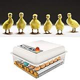 KKTECT Eier Brutmaschine Vollautomatisch 16 Eier Brutmaschine Vollautomatisch Digitalanzeige Home Smart Incubator Automatische Drehung und Temperaturregelung für Puten Hühner Vögeln und Anderen Eiern