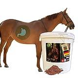 EMMA Mash Pferd I Omega 3 Ergänzung haferfrei I Mash Pferdefutter + Leinsamen geschrotet I alte Pferde bei Zahnprobleme I vorbeugend Verdauungsprobleme Kolik Kotwasser Durchfall beim Pferd 2 kg