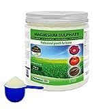 Nortembio Agro Natürliches Magnesiumsulfat 700 g. Universeller Dünger. Förderung des Wachstums der Kulturpflanzen, Gärten und Zimmerpflanzen.
