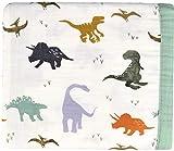 Little Jump Dinosaurier Baby Kuscheldecke, 2-lagig 120x120 cm Bambus musselin babydecke for mädchen Jungen/Weiche Decke für Kinderwagen & Babyschale | Kinderdecke (Dinosaurier)