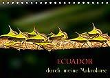 Ecuador durch meine Makrolinse (Tischkalender 2021 DIN A5 quer)