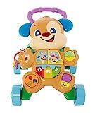 Fisher-Price FRC83 - Lernspaß Hündchens Lauflernwagen und Baby Lauflernhilfe mit mitwachsenden Spielstufen, Liedern und Sätze, Gehhilfe ab 6 Monaten, deutschsprachig