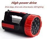 LED wiederaufladbare Hand Ultraschall Repeller/Suchscheinwerfer 2 in 1 Hochleistungs-Schlangenantrieb, Wildschwein Tierantrieb Super helle Laterne Taschenlampe für den Außenbereich