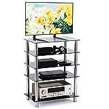 RFIVER HiFi Rack Stand TV Regal Möbel Edelstahl 60 x 40 x 80 cm mit 5 Glasplatten HF1002