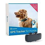 Tractive GPS Tracker für Hunde, unlimitierte Reichweite , Aktivitätstracking, wasserdicht, Hundeortung (Neuestes Modell)