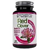 Rotklee Extrakt 500mg - 180 Tabletten - Hochdosiert