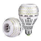 LED E27 Kaltweiss Lampe 27W- SANSI LED Leuchtmittel Dimmbar(ersetzt 250W Edison Glühbirne)4000lm Super Hell LED Birne für Nachttischlampe,Stehlampe,Deckenleuchte,2er Pack