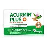 Mizell Kurkuma Kapseln – extra hoch dosiert – C14 zertifiziert & mehrfach ausgezeichnet – Das Original in pharmazeutischer Qualität