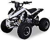 Kinder Quad S-14 125 cc Motor Miniquad 125 ccm Speedy Kinderfahrzeug Midiquad (Schwarz/Weiß)