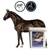 Mineralfutter Pferde I Vitamin B komplex I Biotin Zink Selen Pferd I Vitamine & Mineralstoffe I Vitamine A D E C K3 B1 B2 B6 Mineralien I Huf Fell Haut I Vitaminmangel Senior Pferd 5Kg