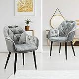 Esszimmerstühle 2er Set, Polsterstuhl grau Samt Stühle mit armlehne Küchenstühle Microfaser Wohnzimmerstühle elegant, Schwarz Metallbeine Belastbar bis 150kg