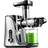 AMZCHEF Entsafter Slow Juicer leistungsstarker Entsafter für Obst und Gemüse mit 2 Geschwindigkeitsmodi, 2 Reiseflaschen (500 ml), LED-Anzeige, Reinigungsbürste und Ruhiger Motor,Silber