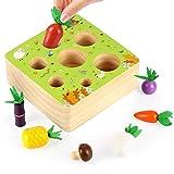 O-Kinee Holzspielzeug Montessori, Holzspielzeug, Montessori Sortierspiel Holzpuzzle, Sortierspiel Holz für Kinder, Motorik Spielzeug Kleinkind, Lernspielzeug für Kinder (Bauernhof)