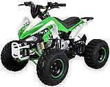 Kinder Quad S-14 125 cc Motor Miniquad 125 ccm Speedy Kinderfahrzeug Midiquad (Grün/Weiß)