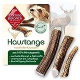 ChronoBalance® Geweih-Kaustange L (halbiert) für Hunde - 100% Hirschgeweih - Kauspielzeug, Zahnpflege, Kausnack, Geweih, Kauknochen