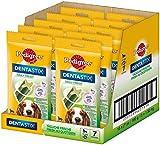 Pedigree DentaStix Daily Fresh Zahnpflegesnack für mittelgroße Hunde – Hundeleckerli mit Aktivwirkstoffen für jeden Tag – Für gesunde Zähne und einen frischen Atem – 70 Sticks (10 x 7 Stück)