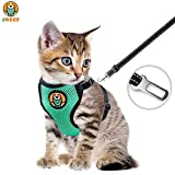 BACIVIC Katzengeschirr Ausbruchsicher für Katzen Geschirr Katze Nachts Leuchten Einstellbarer Weicher Netz-Holster – Ideal für Das Ausführen Kleiner Kätzchen