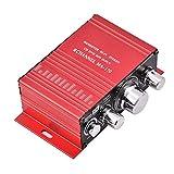 Lazmin Home Mini Audio Verstärker, tragbarer Zweikanal Surround HiFi Sound HiFi Stereo Receiver 12V Adapter fürs Auto