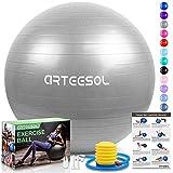 arteesol Gymnastikball, Balance Ball 45cm/55cm/65cm/75cm Yoga Ball mit Pumpe Anti-Burst Fitness Balance Ball für Core Strength (Silber, 65cm)