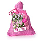 Zwiebelmix 'Rosa' im Jutesack - 50 Stück Blumenzwiebeln, Direkt von holländischem Boden