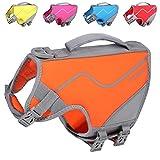 VIVAGLORY Kleine Hundeschwimmweste, Neue Sportliche Neopren-Rettungsweste für Hunde mit DREI Verstellbaren Gurten und Seitlichen Öffnungsschnallen, Orange, Größe XS