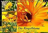 Die Ringelblume. Sonnengelbe, vielseitige Heilpflanze (Tischkalender 2021 DIN A5 quer)