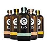 Premium Bio-Kombucha 6 X 480ml MIX RHO KOMBUCHA   Probiotisch Unpasteurisiert Traditionell Langzeitfermentiert Handmade Kalorienarm Vegan   DIY
