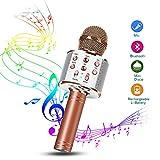 Karaoke Mikrofon, Drahtlose Bluetooth Mikrofon 1A Tragbares Handmikrofon mit Lautsprecher und Aufnahme, Drahtlose Mikrofon Player für Erwachsene und Kinder, Kompatibel mit Android/IOS (S)