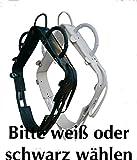 Reitsport Amesbichler Voltigiergurt Master Gurt zum Voltigieren Gr. Vollblut 057/86A