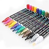 Stifte zum Steine Bemalen,2mm Wasserfeste Stift Schnelltrocknend,12 Farben Permanent Marker Paint Pen Set für Glas,Leinwand,Glas,Metall Holz,Reifen DIY