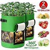 CAVEEN Pflanzen Taschen 10 Gallon 360° Sichtfenster Pflanzsack Kartoffel 2 teilig, Blumentöpfe Möhren Tomaten Pflanzbeutel mit Griffen Klettverschluss Atmungsaktiv Pflanztasche aus Vliesstoff, Grün