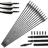 Tongtu 12pcs 31' Pfeile Glasfaser Bogenpfeile für Bogenschießen mit Kunststoffbefiederung Jagdpfeile für Recurvebogen und Langbogen
