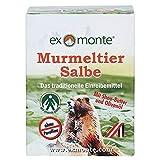 exmonte Murmeltiersalbe, 1er Pack (1 x 0.1 l)