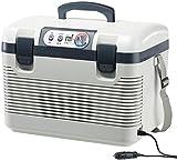 Xcase Kühlbox: Thermoelektrische Kühl-/Wärmebox, LED-Anzeige, 12/24 & 230 V, 19 Liter (Kühlbox elektrisch)