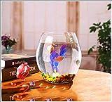 TANERDD Aquarium Kleiner Glasschreibtisch Wohnzimmer Desktop transparent zylindrisch kleines Aquarium Goldfischbecken der Hydrokulturpflanze für Schlafzimmer, Küche, Büro, Wohnzimmer