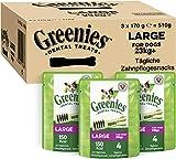 Greenies Dental Treats Original Large – 12 Zahnpflegesnacks für große Hunde ab 23 kg – Hundeleckerli zur täglichen Zahnreinigung – 3er Pack – 3 x 170 g