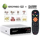 GT MEDIA GTS Sat Receiver Android TV Box 6.0 4K DVB-S/S2 Amlogic S905D 2GB RAM/8GB ROM 3D H.265 HEVC MPEG-2/4 WiFi 2.4G Ethernet BT 4.0 Smart TV Box Satelliten Receiver